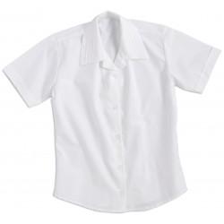 Camisa Empresarial